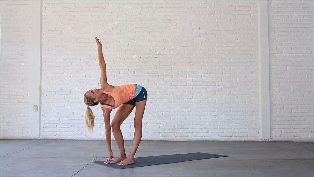 Twisting Standing Forward Bend